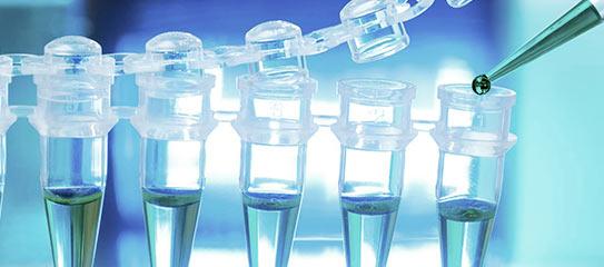 Biotecnología y Química